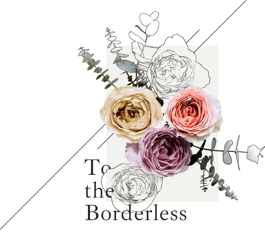 To the Borderless